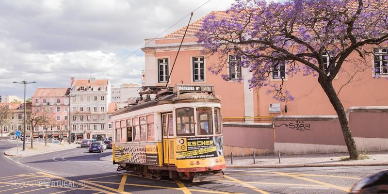 24 трамвай в Лиссабоне