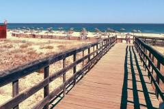 Meia-Praia-5.jpg
