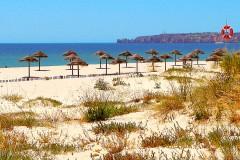 Meia-Praia-6.jpg
