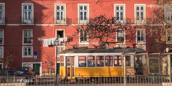 Коронавирус в Португалии