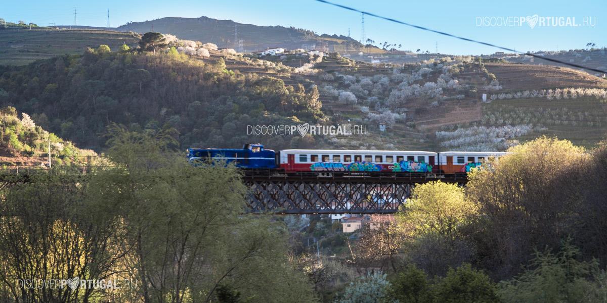 Пригородные поезда Порту