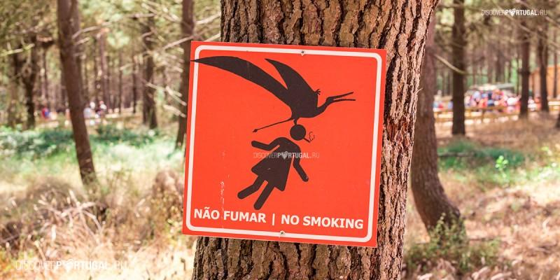 Особенности курения в Португалии